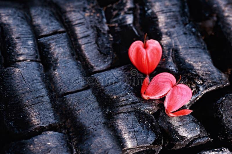 Dos corazones en los carbones imagen de archivo