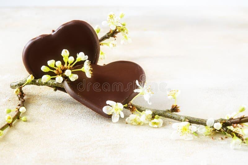 Dos corazones oscuros del chocolate y un flor blanco ramifican para Valentín fotos de archivo