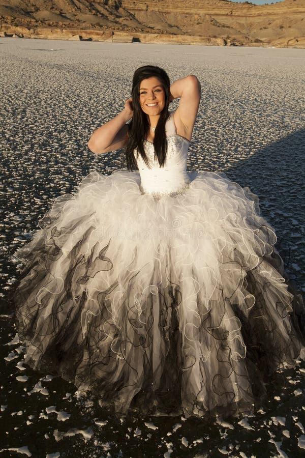 Dos de montagne de sourire de glace de robe formelle de femme image libre de droits