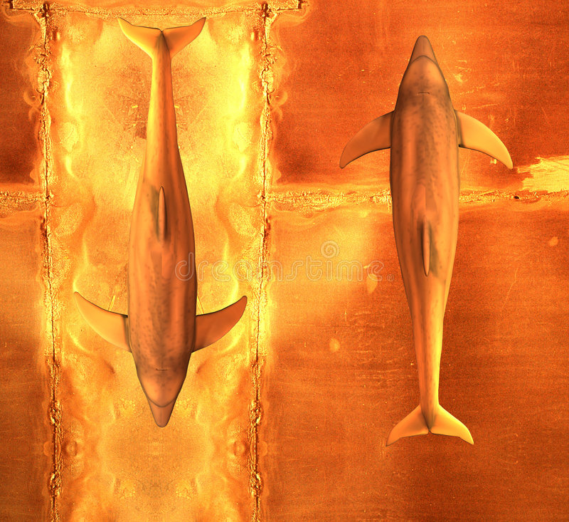 Dos delfínes libre illustration
