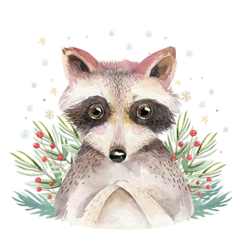 Dos desenhos animados bonitos do guaxinim do bebê da aquarela projeto animal do retrato Cartão do feriado de inverno no fundo bra ilustração do vetor