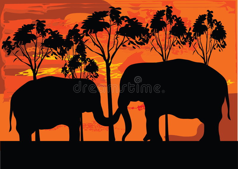 Dos elephans ilustración del vector