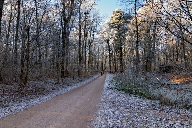 Dos en el bosque del invierno fotos de archivo