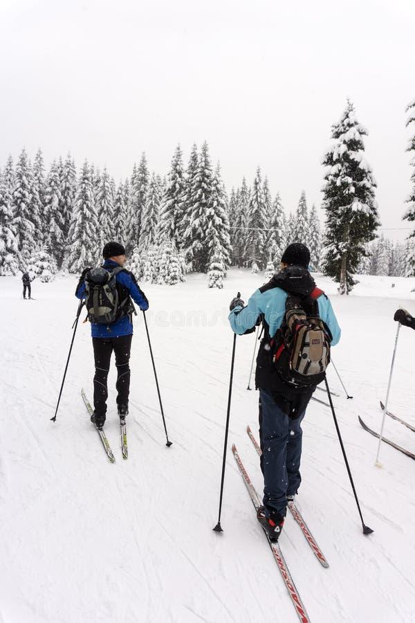 Dos esquiadores de sexo masculino no identificados en un viaje a campo través en tiempo nevoso imágenes de archivo libres de regalías