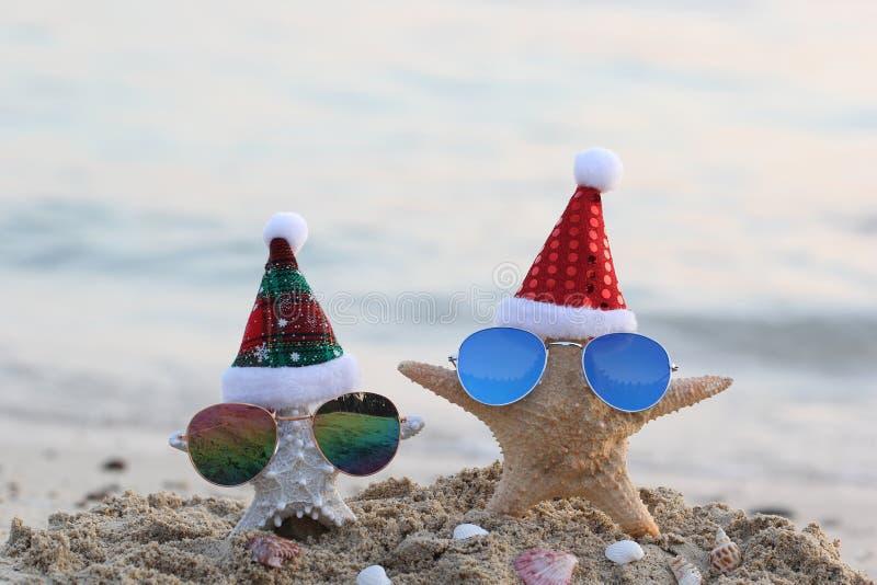 Dos estrellas de mar en la playa del mar con las gafas de sol y el sombrero de santa por Feliz Navidad y Años Nuevos imágenes de archivo libres de regalías