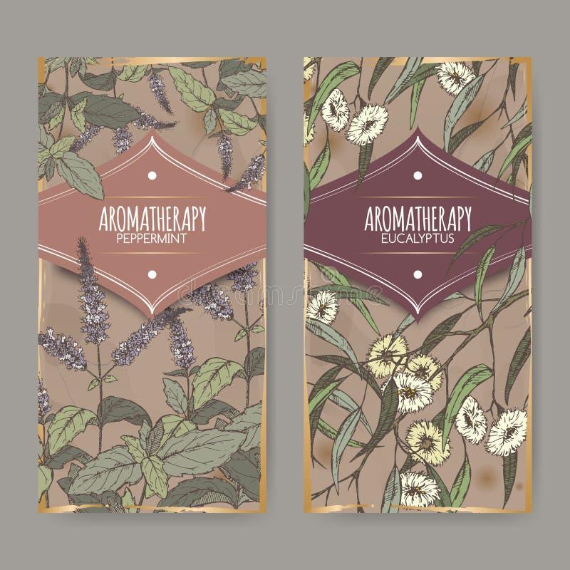 Dos etiquetas con la hierbabuena, bosquejo del color del eucalipto en fondo del vintage stock de ilustración