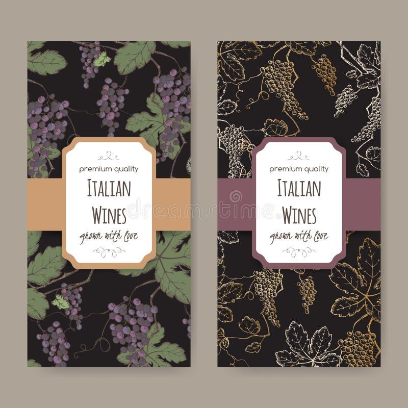 Dos etiquetas del vino con el modelo de la vid del color en fondo negro stock de ilustración