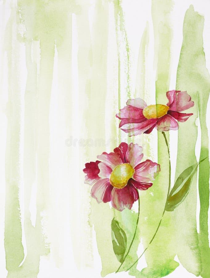 Dos flores ilustración del vector