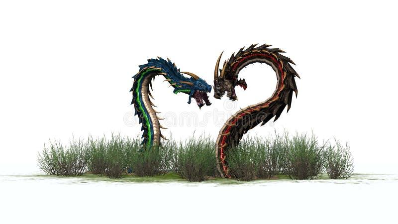 Dos gusanos del dragón en la hierba ilustración del vector