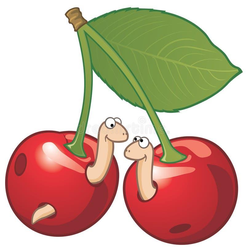 Dos gusanos en cerezas stock de ilustración