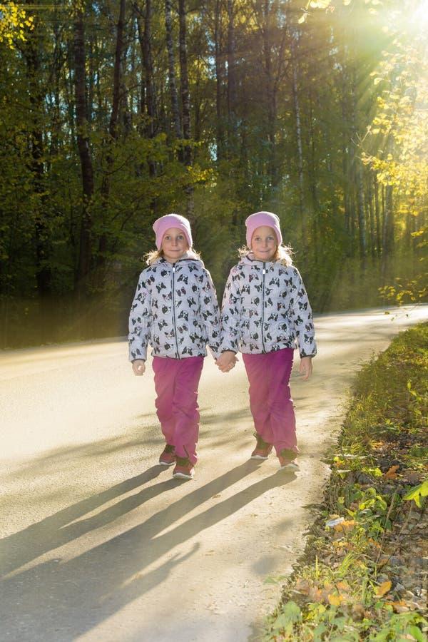 Dos hermanas gemelas pasan a través del parque del otoño de común acuerdo fotos de archivo libres de regalías