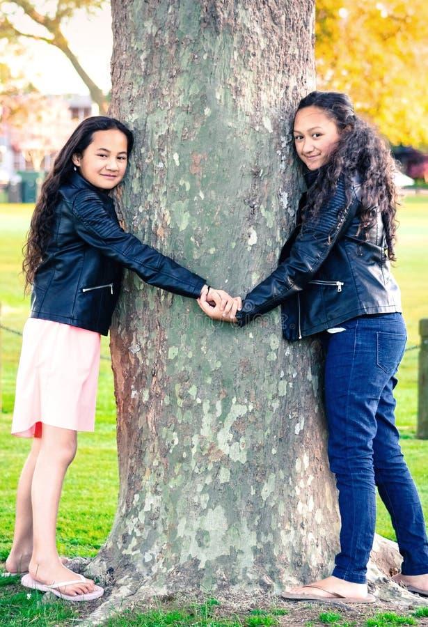 Dos hermanas maoríes que llevan a cabo las manos que abrazan un árbol fotos de archivo libres de regalías