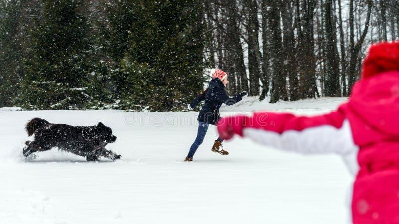Dos hermanas que juegan en nieve con el perro del newfoundlander fotografía de archivo