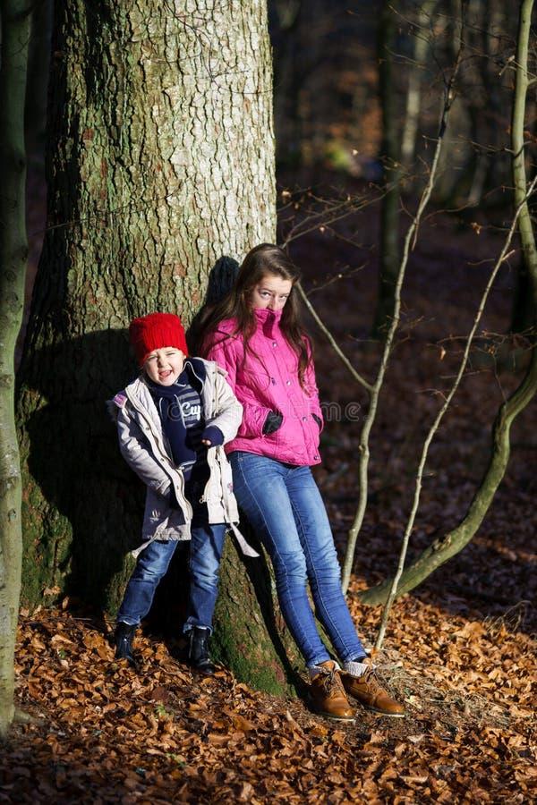 Dos hermanas que presentan en bosque otoñal imagen de archivo libre de regalías