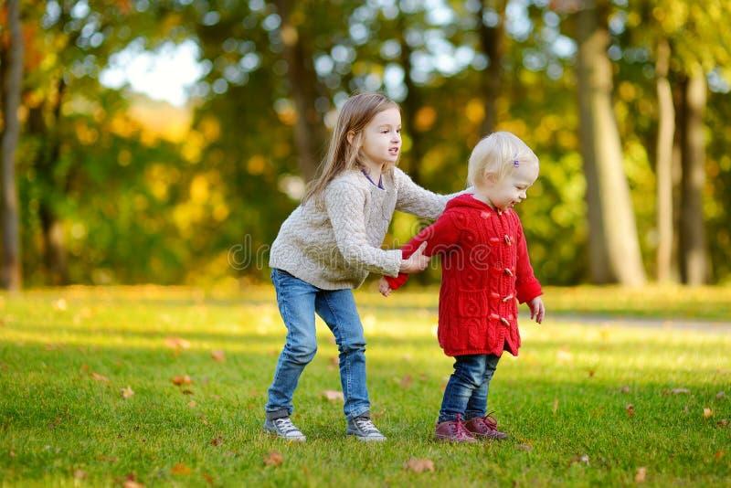 Download Dos Hermanas Que Se Divierten En Parque Hermoso Del Otoño Imagen de archivo - Imagen de lindo, amor: 42443331