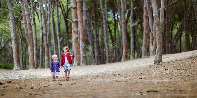 Dos hermanas que tienen un paseo en el bosque imagen de archivo libre de regalías