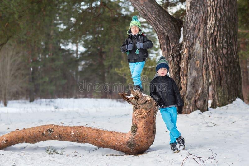 Dos hermanos en el bosque del invierno imagenes de archivo