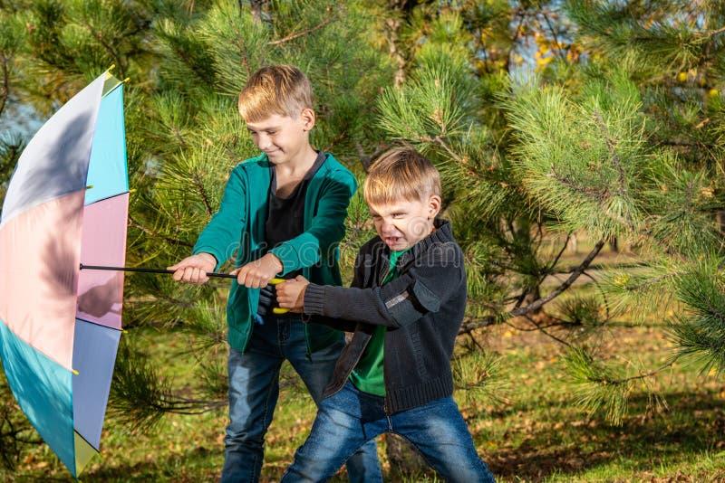 Dos hermanos están tirando de un paraguas coloreado contra el viento en un bosque del pino fotografía de archivo