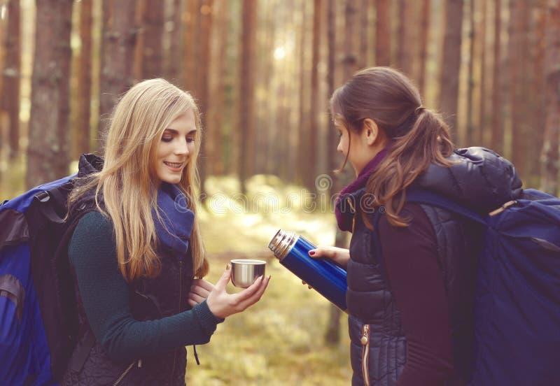 Dos hermosos y mujeres jovenes que caminan en bosque y té de consumición fotografía de archivo libre de regalías