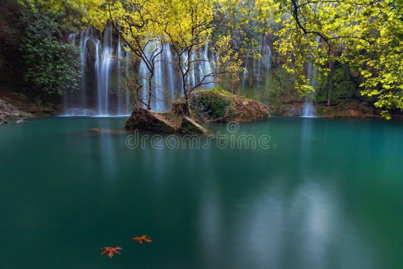 Dos hojas de otoño en un lago esmeralda con las cascadas imponentes en bosque de color verde oscuro en el parque natural de Kursu fotos de archivo libres de regalías