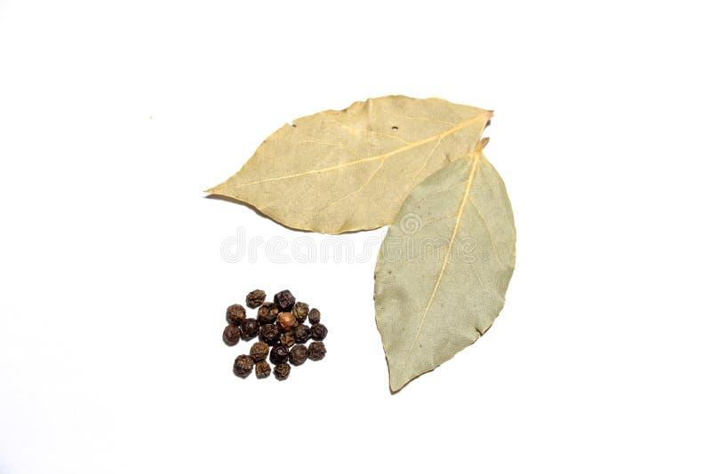 Dos hojas sospechadas y varios pedazos de pimienta negra, mentira del laurel en un fondo blanco imágenes de archivo libres de regalías