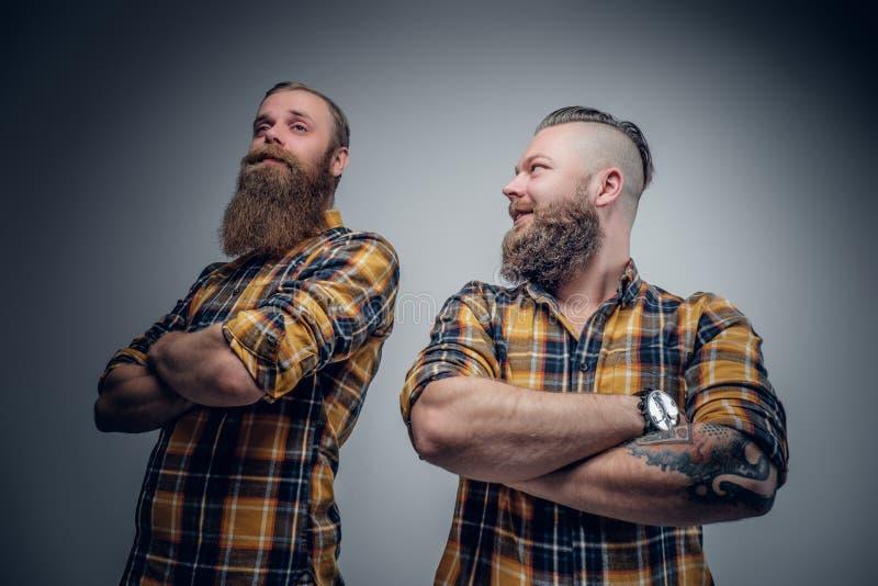 Dos hombres barbudos divertidos se vistieron en una camisa de tela escocesa que presentaba en vagos grises imagenes de archivo