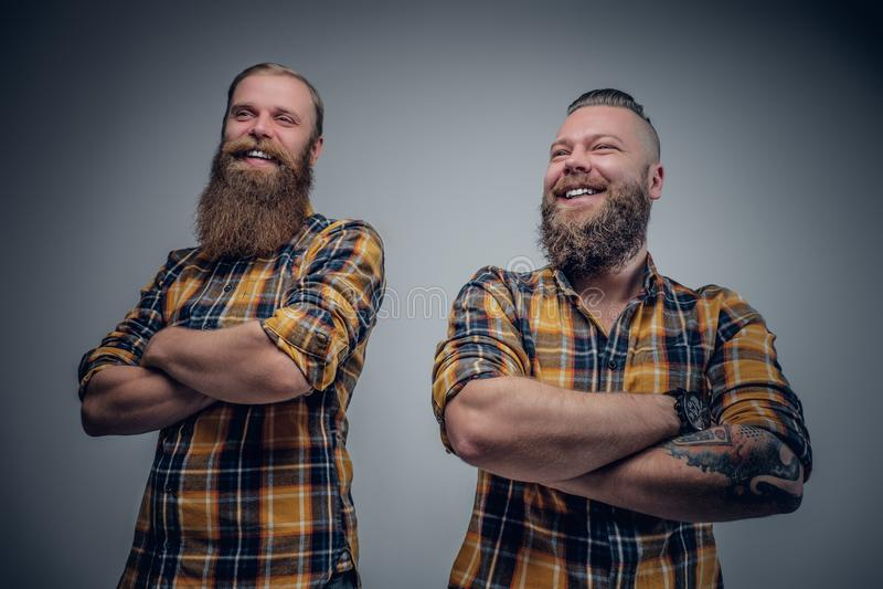 Dos hombres barbudos divertidos se vistieron en una camisa de tela escocesa que presentaba en vagos grises imágenes de archivo libres de regalías