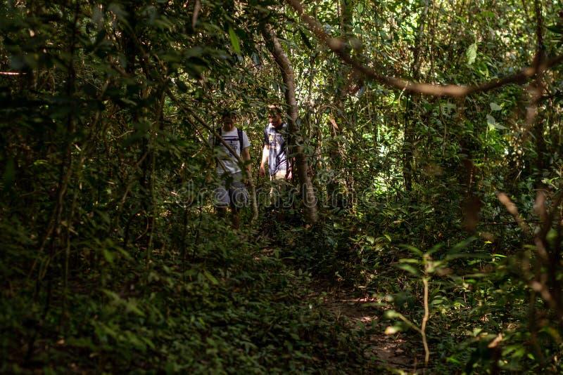 Dos hombres que caminan en la selva en Angkor Thom, Camboya foto de archivo libre de regalías