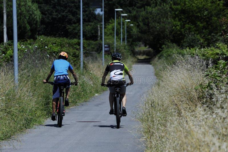 Dos hombres que montan las bicis en la naturaleza fotos de archivo libres de regalías