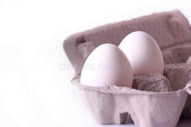 Dos huevo blanco y bandeja foto de archivo
