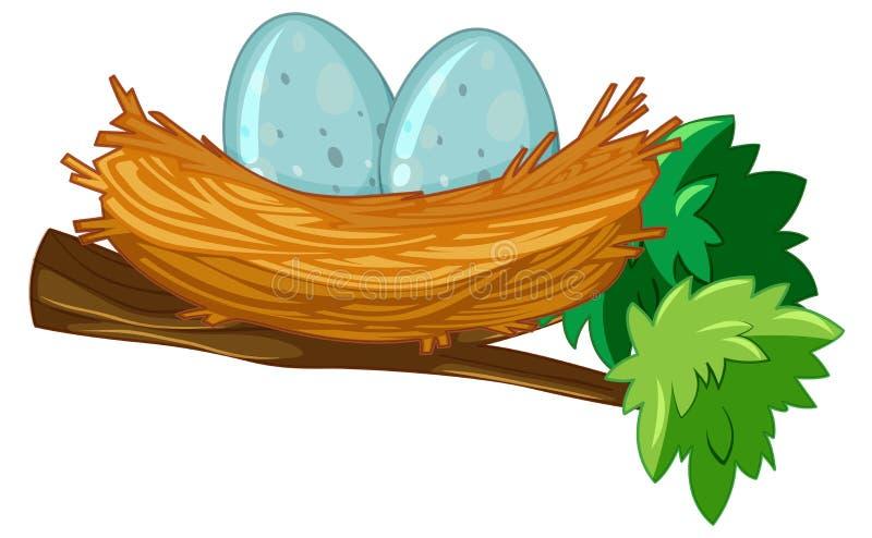 Dos huevos en jerarquía ilustración del vector