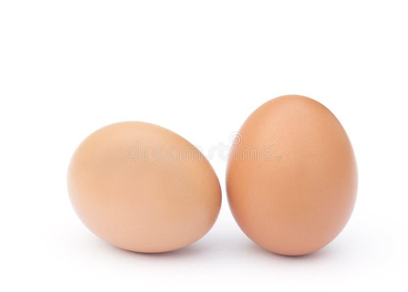Dos huevos marrones del pollo imagen de archivo
