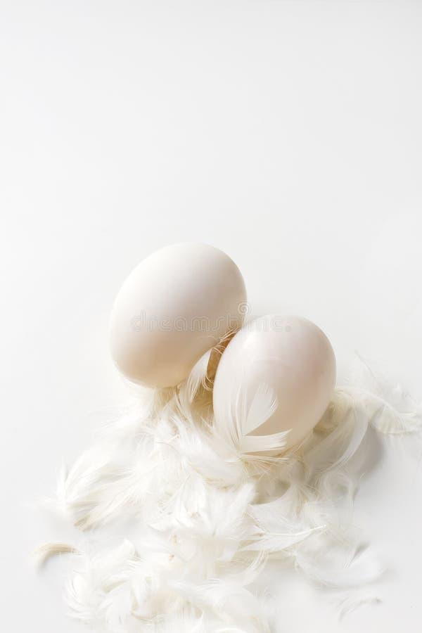 Dos huevos y plumas del pato en un fondo blanco foto de archivo libre de regalías