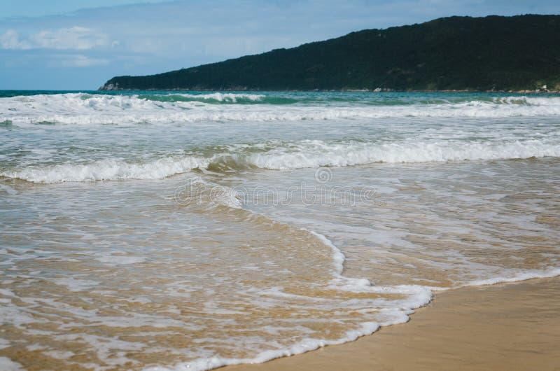DOS Ingleses, Florianopolis de Praia photographie stock