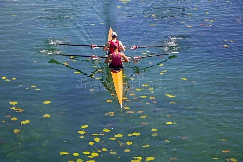 Dos jóvenes atletas remo en el lago verde imagenes de archivo