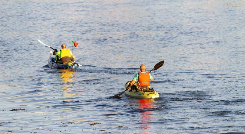 Dos Kayakers que reman en el río foto de archivo