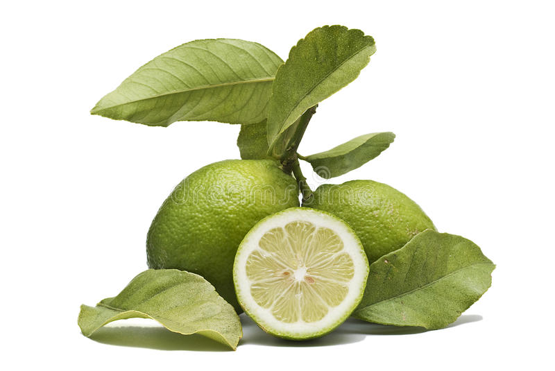 Dos limones y una mitad. imágenes de archivo libres de regalías