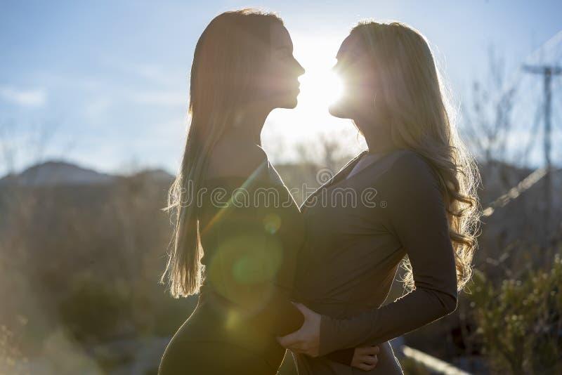 Dos Lovers Enjoying Each Others Company en la puesta del sol fotos de archivo libres de regalías