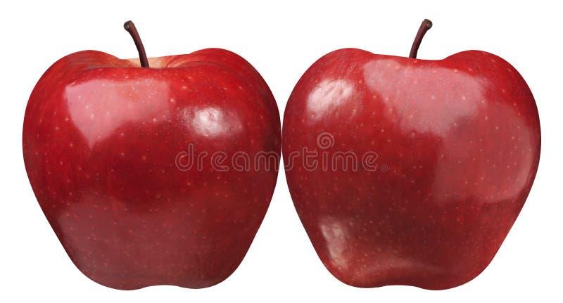 Dos manzanas imagenes de archivo