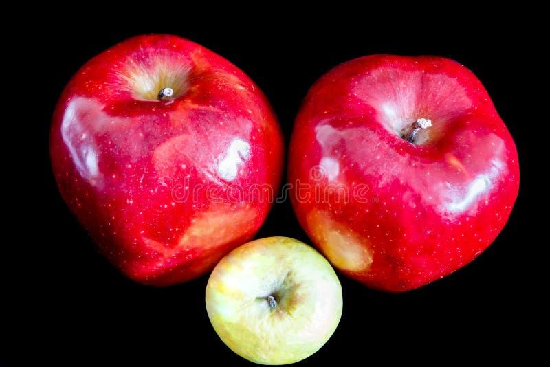 Dos manzanas maduras rojas en fondo negro y uno arrugaron verde imagenes de archivo