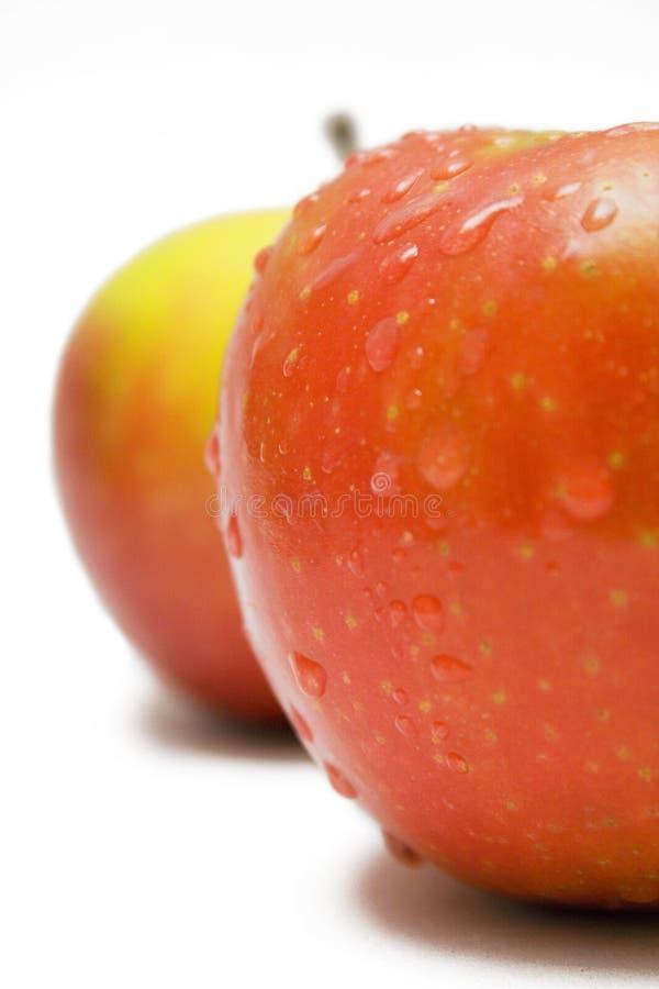Dos manzanas Rojo-Amarillas con las gotas de agua (visión cercana) imagenes de archivo