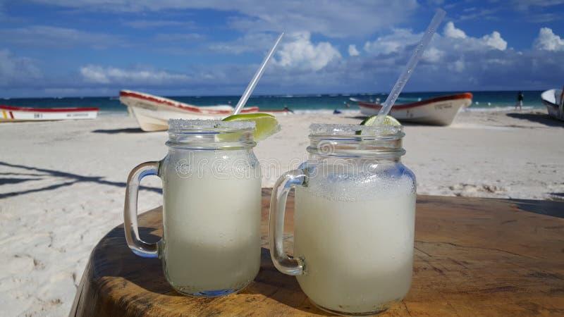 Dos margaritas congelados en la playa de Tulum imágenes de archivo libres de regalías