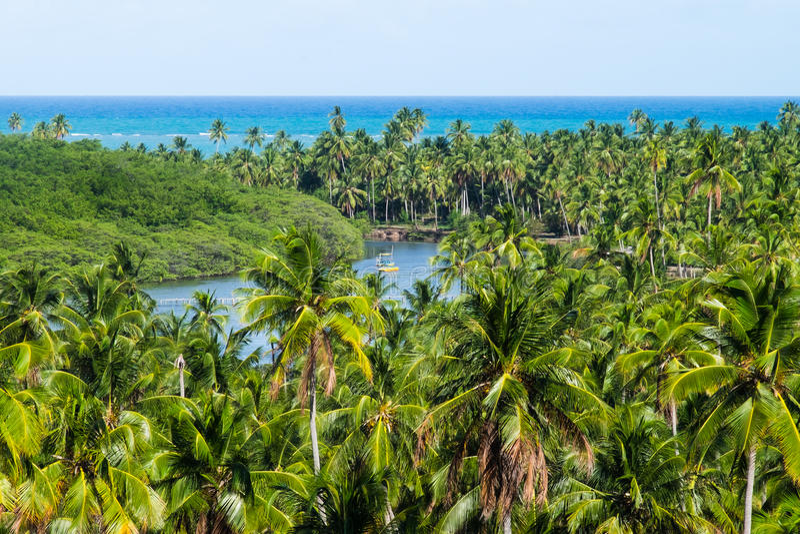 DOS Milagres - Alagoas, Brasile di Miguel del sao immagini stock libere da diritti