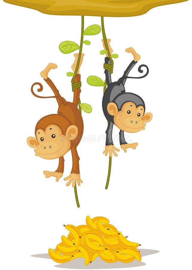 Dos monos stock de ilustración