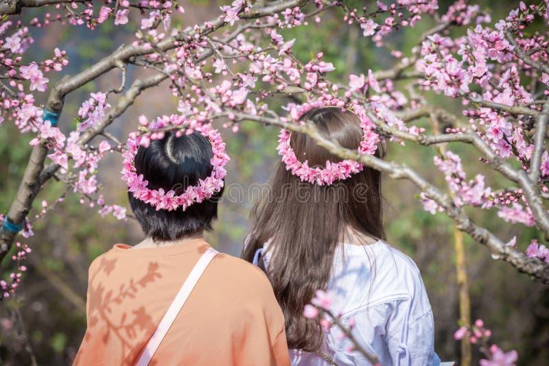 Dos muchachas chinas con la corona de la flor entre árboles del flor del melocotón fotografía de archivo libre de regalías