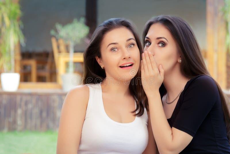 Dos muchachas del mejor amigo que susurran un secreto fotografía de archivo