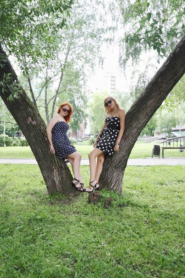 Dos muchachas hermosas colocan árboles cercanos fotos de archivo