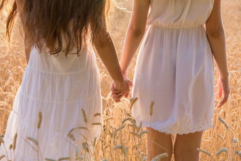 Dos muchachas que se unen en el campo de trigo, primer foto de archivo libre de regalías
