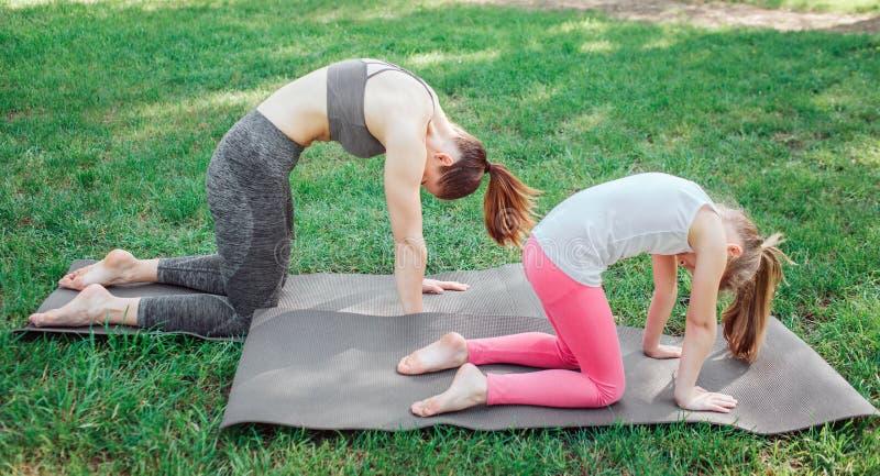 Dos muchachas se están colocando en carimate y están llevando a cabo su parte posterior curvada Están equilibrando en esa actitud foto de archivo libre de regalías