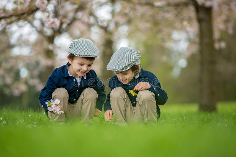Dos muchachos adorables, leyendo un libro en un parque floreciente de la primavera imagenes de archivo